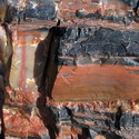 A macro shot of petrified wood at the Petrified Forest National Park
