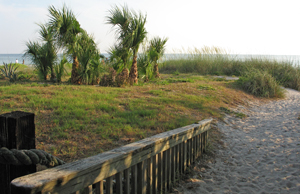 End of Suncoast Seabird Sanctuary's walkway