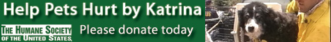 Click the banner to donate